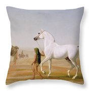 The Wellesley Grey Arabian Led Through The Desert Throw Pillow