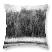 The Western Shore Throw Pillow