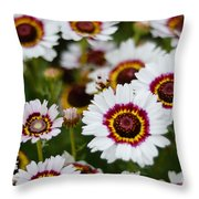 The White Field Throw Pillow