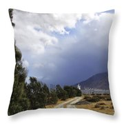 The Wind Journey Palm Springs Throw Pillow