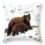 The Winter Guide Throw Pillow