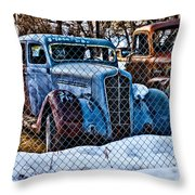 The Winter Of Existence Throw Pillow