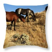The Women Of Theodore Roosevelt Throw Pillow