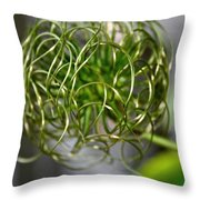 The World Of Clematis  Throw Pillow