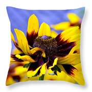 The Wow Factor Throw Pillow