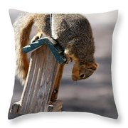 Theif  Throw Pillow