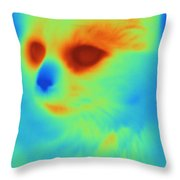 Thermogram Of A Cat Throw Pillow