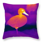 Thermogram Of A Cinnamon Teal Duck Throw Pillow