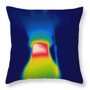 Thermogram Of A Light Bulb Throw Pillow