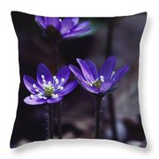 These Appear To Be Blossoms Throw Pillow