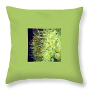 These Flowers Were On Their Way Out Throw Pillow