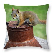 They Call Me Rusty Throw Pillow