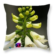 They Come In Peace Throw Pillow