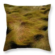 Thick Grasses Blow In The Wind And Form Throw Pillow
