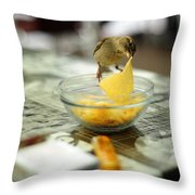 Thief Throw Pillow