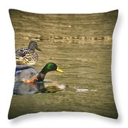 Thin Ice Wet Duck Throw Pillow