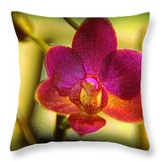 Think Of Spring Time Throw Pillow
