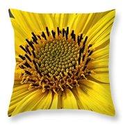 Thinleaf Sunflower Throw Pillow