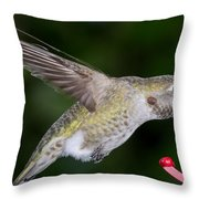 Thirsty Critter Throw Pillow