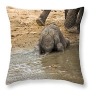 Thirsty Young Elephant Throw Pillow