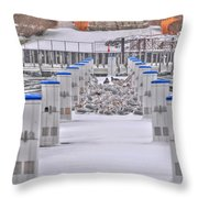 This Cold's For The Birds Throw Pillow
