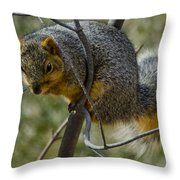 This Is My Tree Throw Pillow
