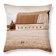 This Old Farm II Throw Pillow