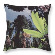 This Shot Is An Enlargement Of 55f13 Throw Pillow