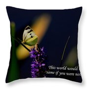 This World Throw Pillow