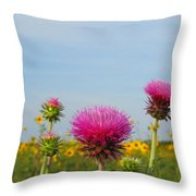 Thistle And Sunflower 2am-110468 Throw Pillow