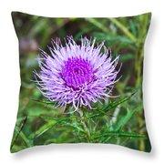Thistle Dew 1 Throw Pillow