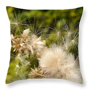 Thistle Down Throw Pillow