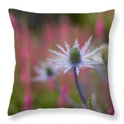 Thistle Dream Grove Throw Pillow