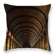 Thomas Burgh Library, Trinity College Throw Pillow