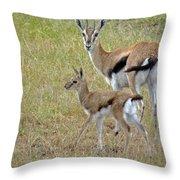 Thomsons Gazelle Throw Pillow