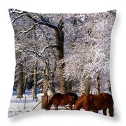 Thoroughbred Horses, Mares In Snow Throw Pillow