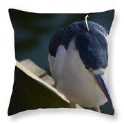Thoughtful Bird Throw Pillow
