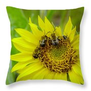 Three Bees Hunkering Down Throw Pillow