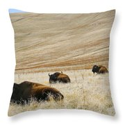 Three Bison Throw Pillow