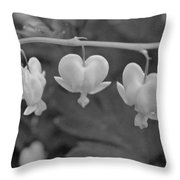 Three Bleeding Hearts In Bw Throw Pillow