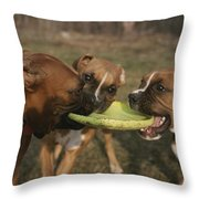 Three Boxer Dogs Play Tug-of-war Throw Pillow