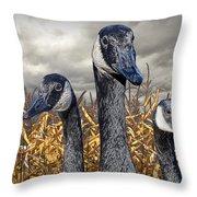 Three Canada Geese In An Autumn Cornfield Throw Pillow