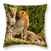 Three Cats Throw Pillow