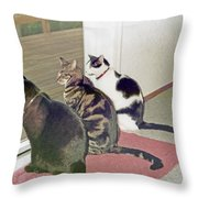 Three Cats Looking Out Into The Forest Throw Pillow
