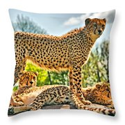 Three Cheetahs Throw Pillow