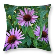 Three Coneflowers Throw Pillow