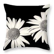 Three Daisy Amigos Throw Pillow
