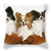 Three Dogs Throw Pillow