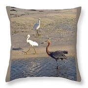 Three Egrets Throw Pillow