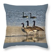 Three Geese Throw Pillow